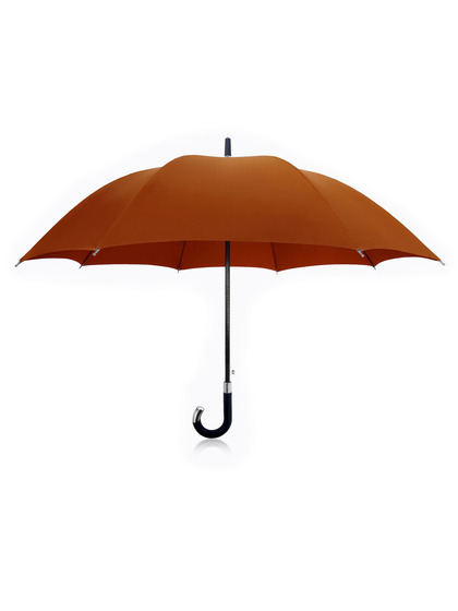 Gilt has travel- and full-sized Davek umbrellas</a> on sale right now