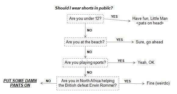 Shorts: Acceptable When Paired with Mild Reluctance