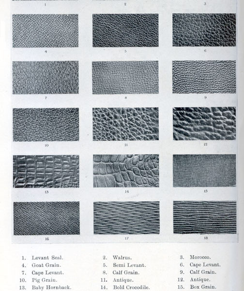 Pretty cool list of different types of leather grains