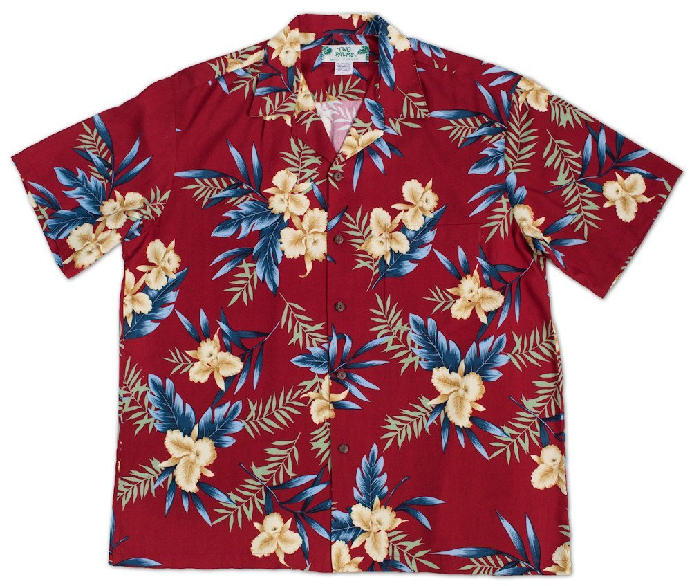 6d2374e3 Despite their rich cultural history and associations with surfing, most of  us think of Hawaiian shirts (known as Aloha shirts in Hawaii) as the  uniform of ...